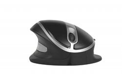 Muis B&E Oyster Mouse, div. uitvoeringen